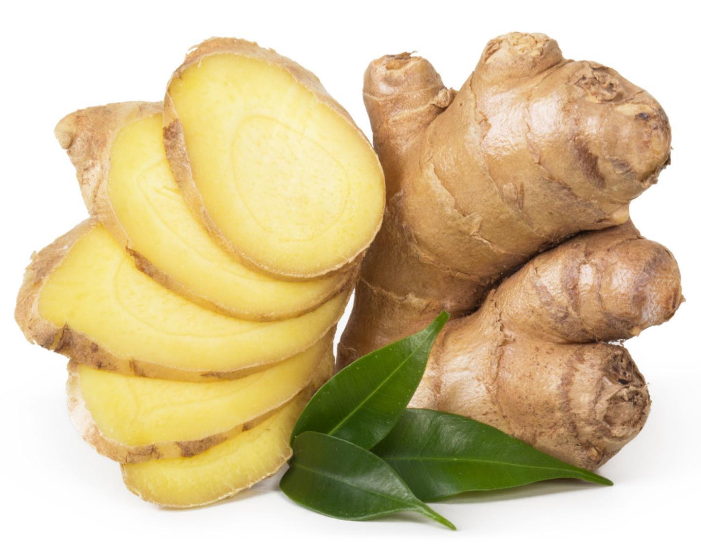 ginger Ginger (zingiber officinale) is a flowering plant whose rhizome, ginger root or simply ginger, is widely used as a spice or a folk medicine it is a herbaceous perennial which grows annual pseudostems (false stems made of the rolled bases of leaves) about a meter tall bearing narrow leaf blades.