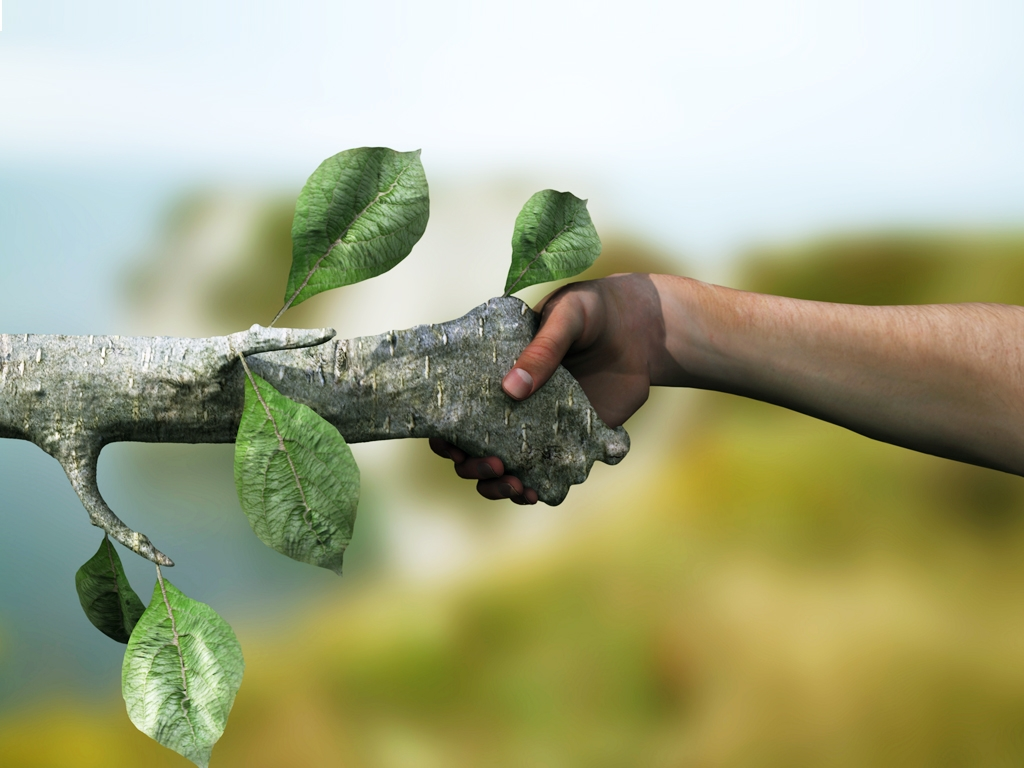 the nurture and care from nature and the damage caused by humans to our environment