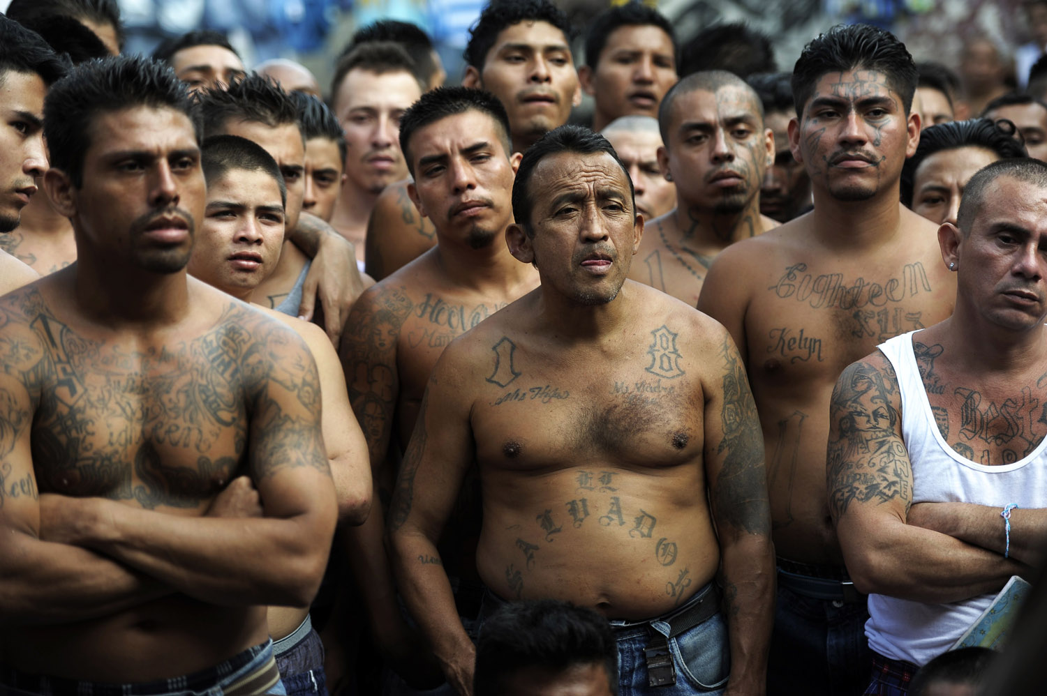 ms 13 a dangerous gang Here is a list of the 10 most dangerous gangs on earth 10 ms-13 la mara salvatrucha, commonly known as ms or ms-13, is a street gang started in the 1980s by el salvadoran transplants living in los angeles.