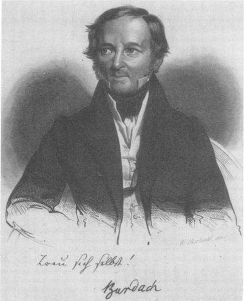 Фридрих Бурдах