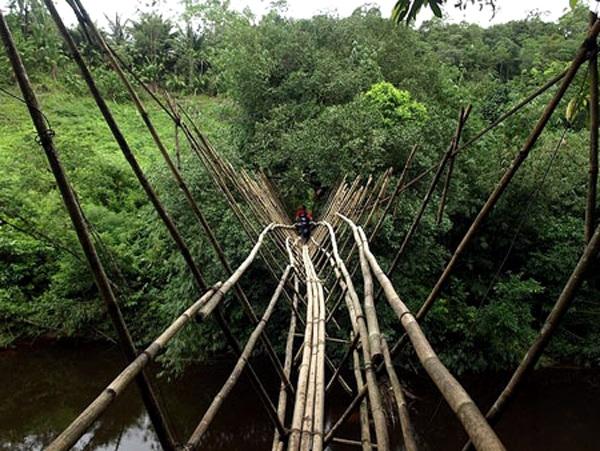 Бамбуковый мост в Борнео