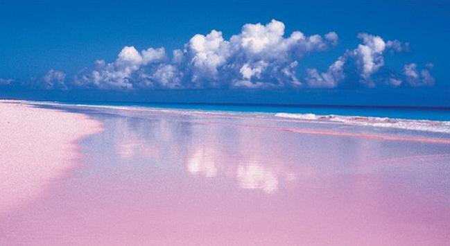 Пляж Pink Sands Beach
