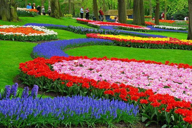 Парк Кёкенхоф (Голландия)
