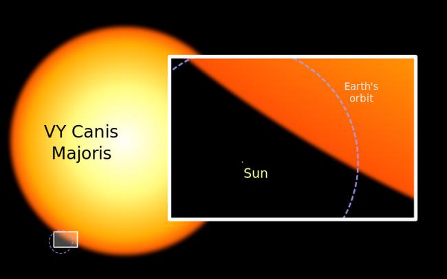 Солнце и самая большая звезда VY Canis Majoris