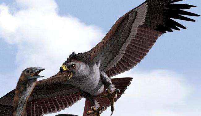 Аргентавис - самая большая летающая птица древности