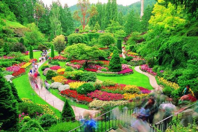 Сады Бутчартов (Канада)