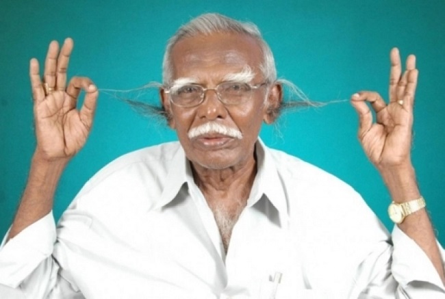 Самые длинные волосы в ушных раковинах