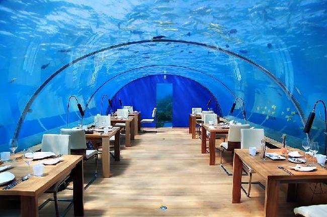 Ithaa Undersea Restaurant на Мальдивах