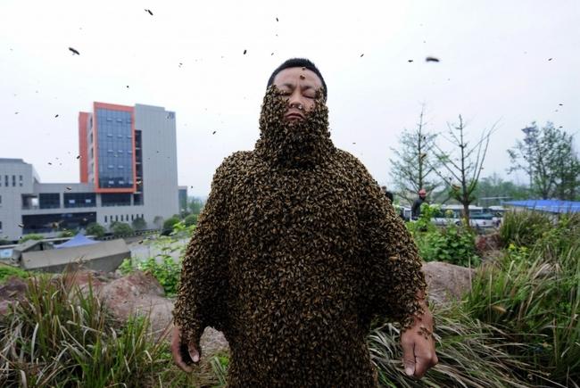 Большим количеством пчел облепил себя китайский пасечник Гао Бинггуо
