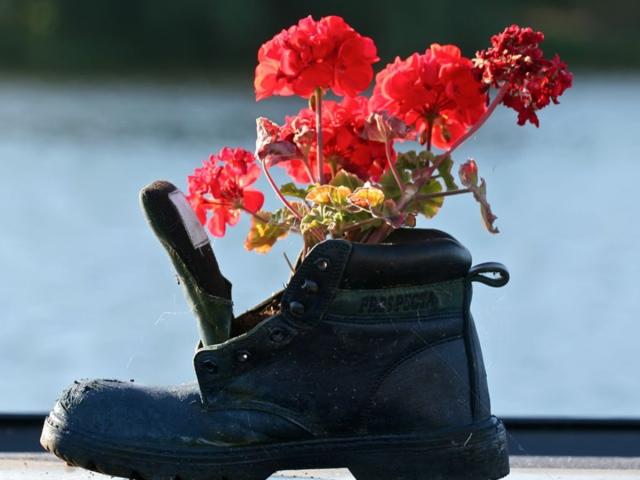 Цветочное благоухание и предметы обуви
