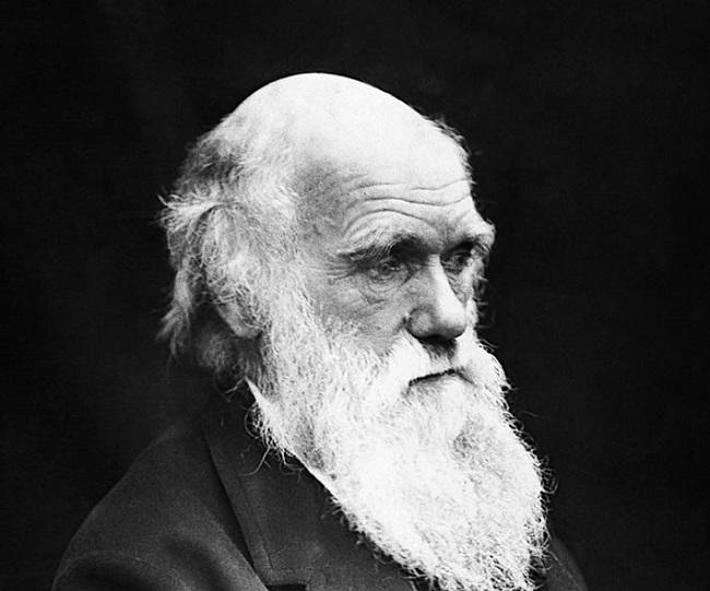 Дарвин, в конце концов, стал отрекаться от своей же теории