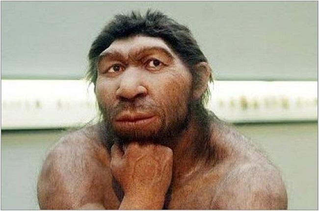 Древние люди существовали в одно время, и ни один вид не произошел от другого