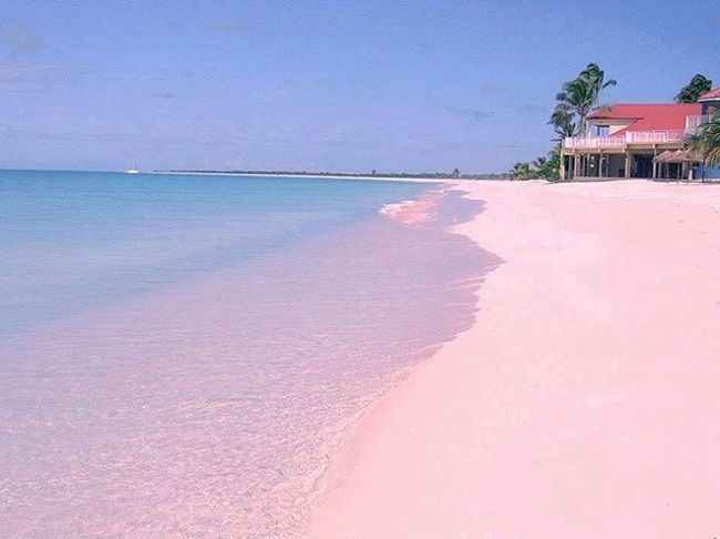 Розовые пляжи