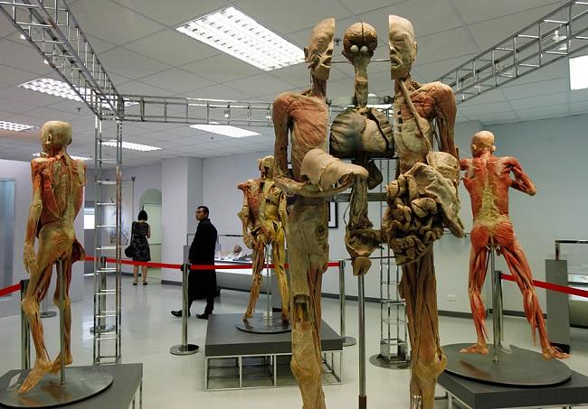Музей Медицины Сирираж (Музей Смерти) в Бангкоке