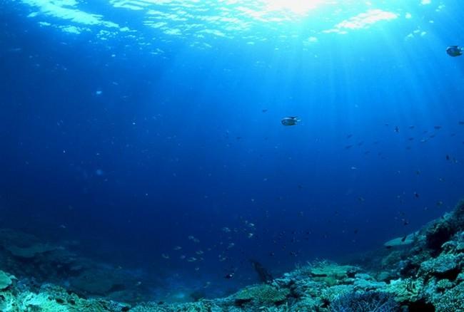 Средняя глубина Тихого океана - 4000 м