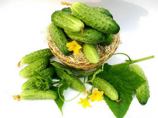 Прекрасными компонентами в блюда, приготавливаемые для похудения, станут огурцы