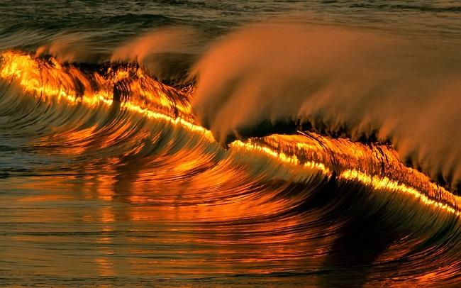 Золотой океан