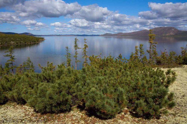 Озеро Лабынкыр на востоке Якутии