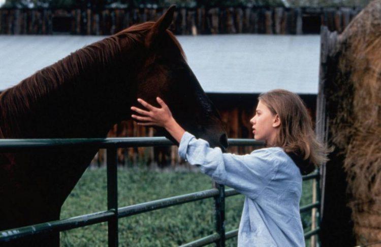 Редфорд был в восторге от искренней игры Скарлетт в «Заклинателе лошадей»