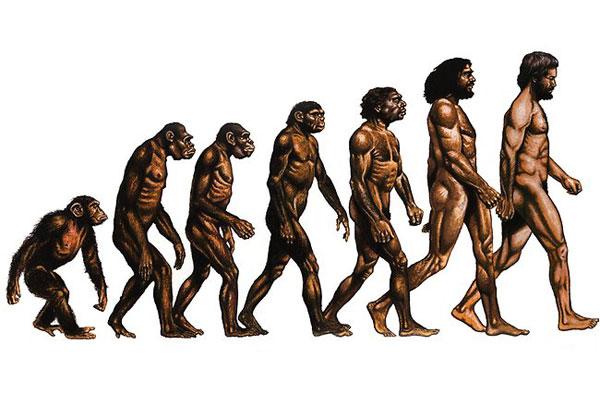 Эволюция, подарившая жизнь