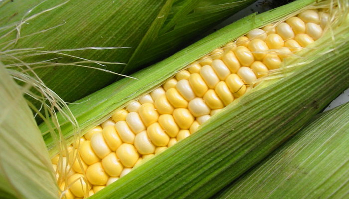 Неочищенная кукуруза