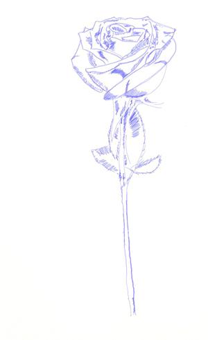 Как сделать розу живой?