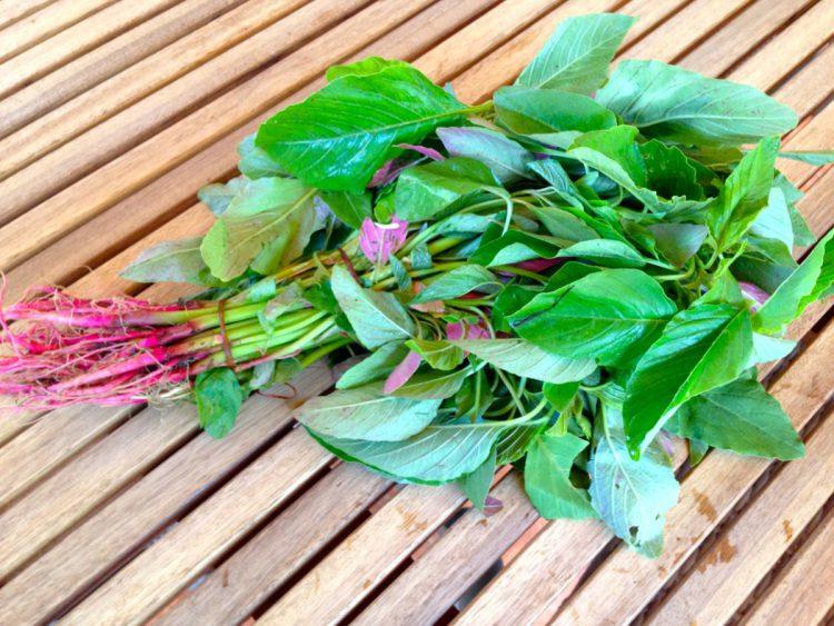 Зеленые овощи: амарант