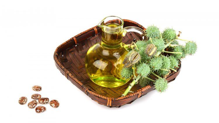 Касторовое масло из семян клещевины