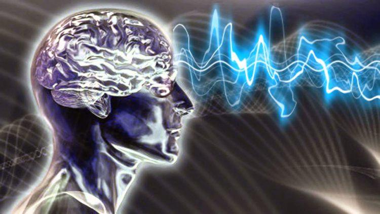 Как соотносятся мозг и душа