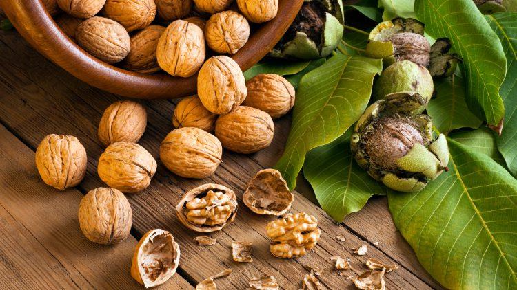 Грецкие орехи улучшают память