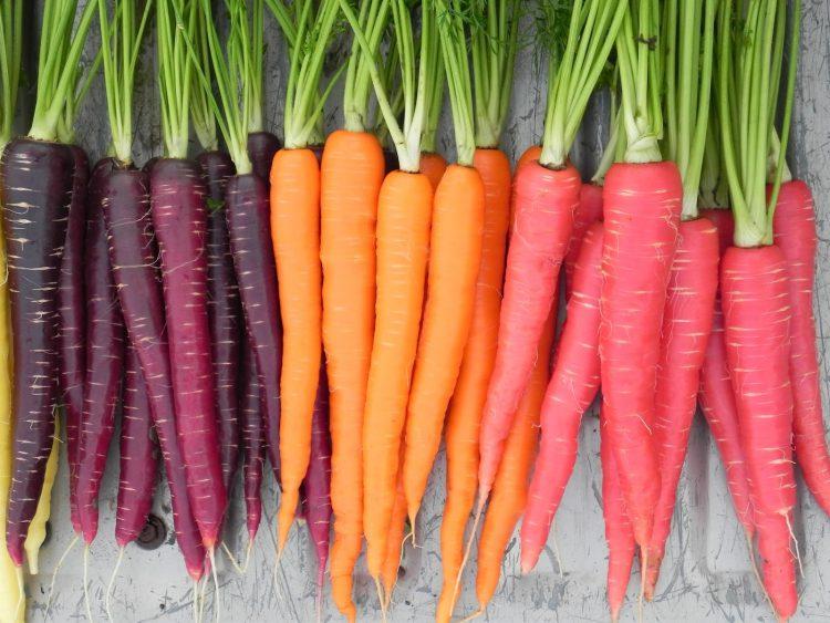 Лютеин содержится в моркови