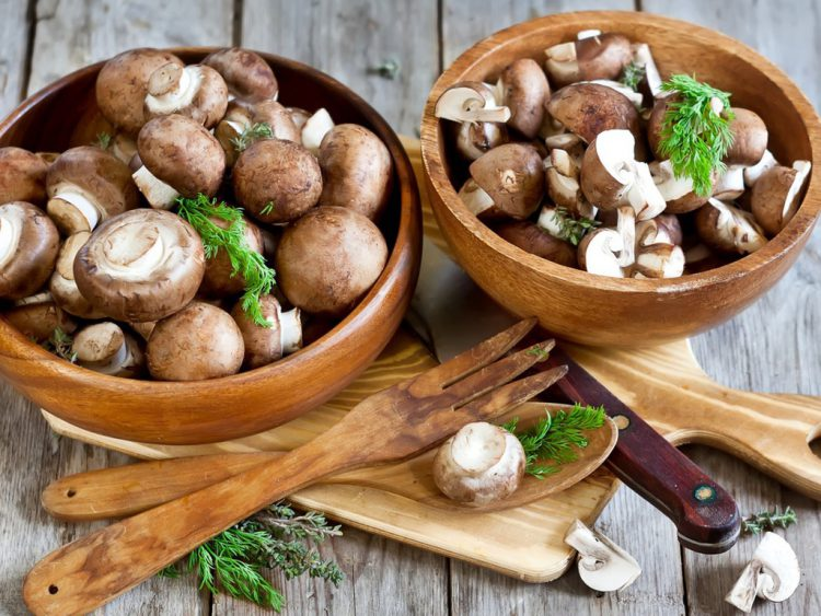 Как варить свежие грибы