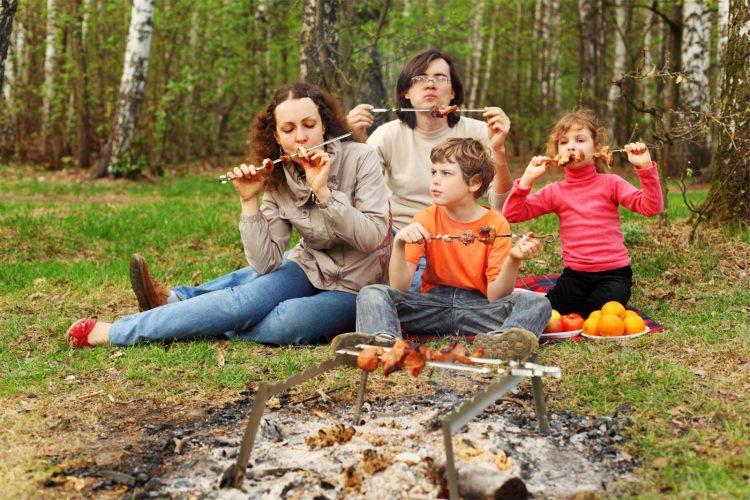 Отдых в лесу у костра всей семьей