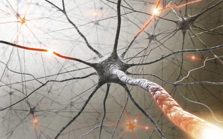 Что происходит с нервной системой при рассеянном склерозе