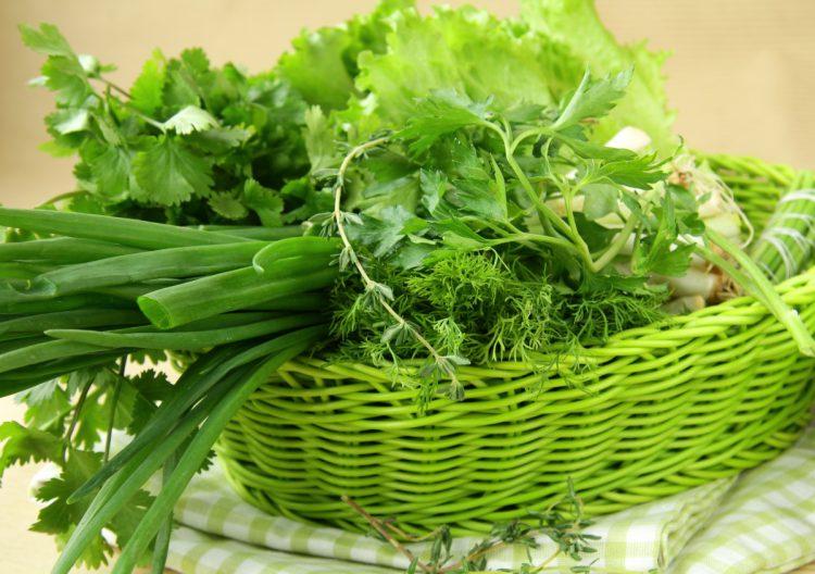 Зелень и зеленые овощи