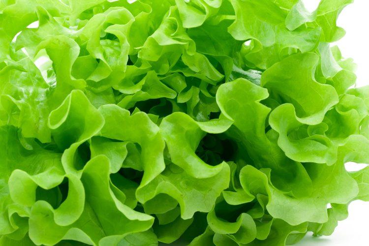 Салат, зелень, овощи