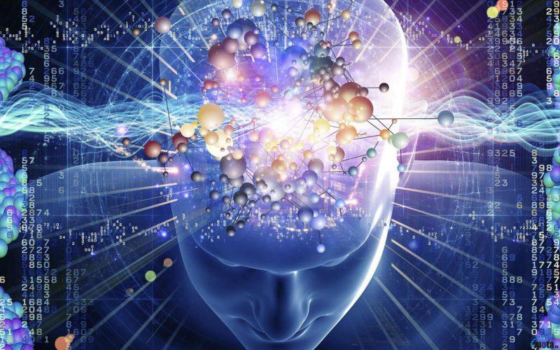 разум человека