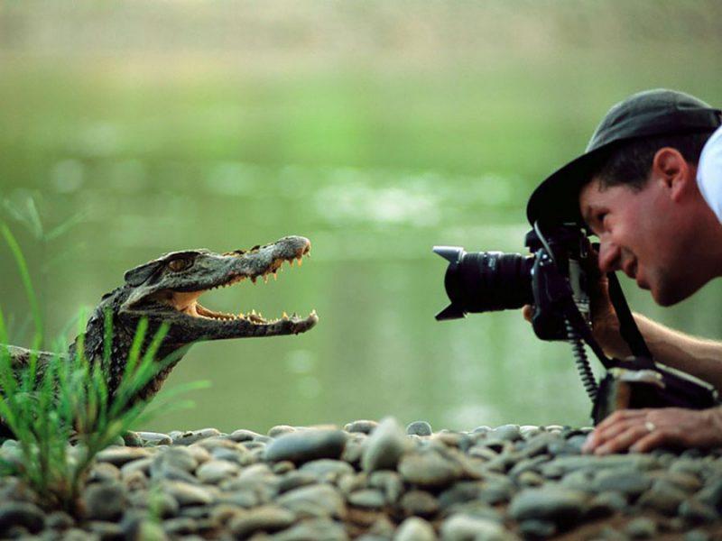 невероятные фотографии