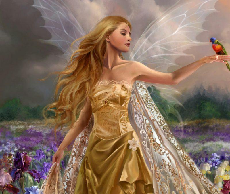 фея для исполнения мечты