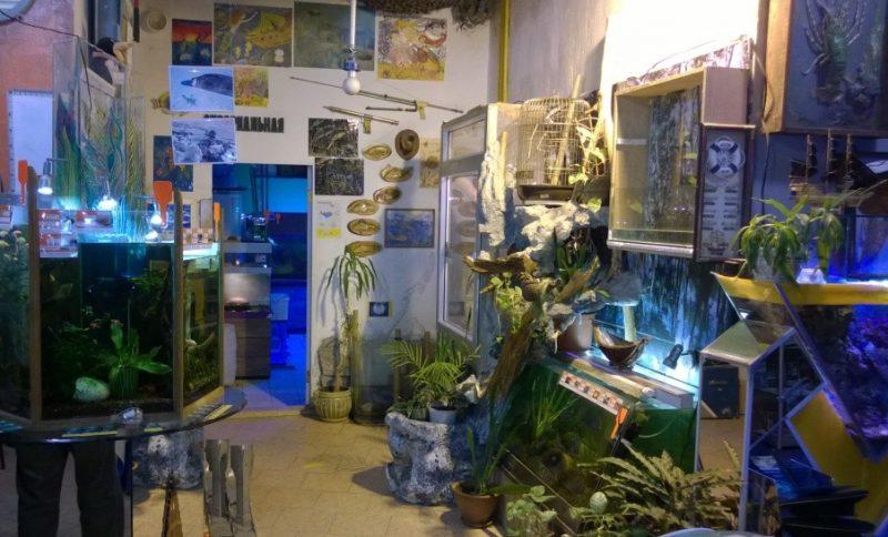 Центр океанографии