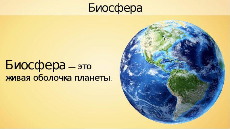 определение биосферы
