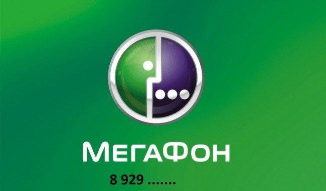 8929 какой оператор и регион