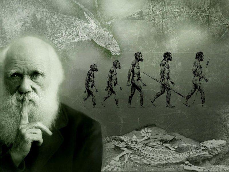 Психологическая теория революции