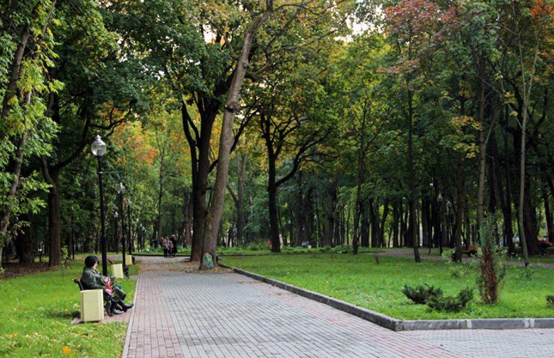 Рогожинский парк