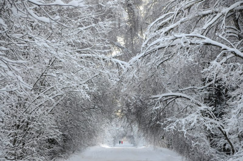 снег во сне значение