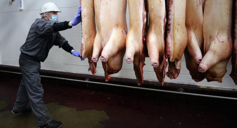 мясо свинины и мусульмане