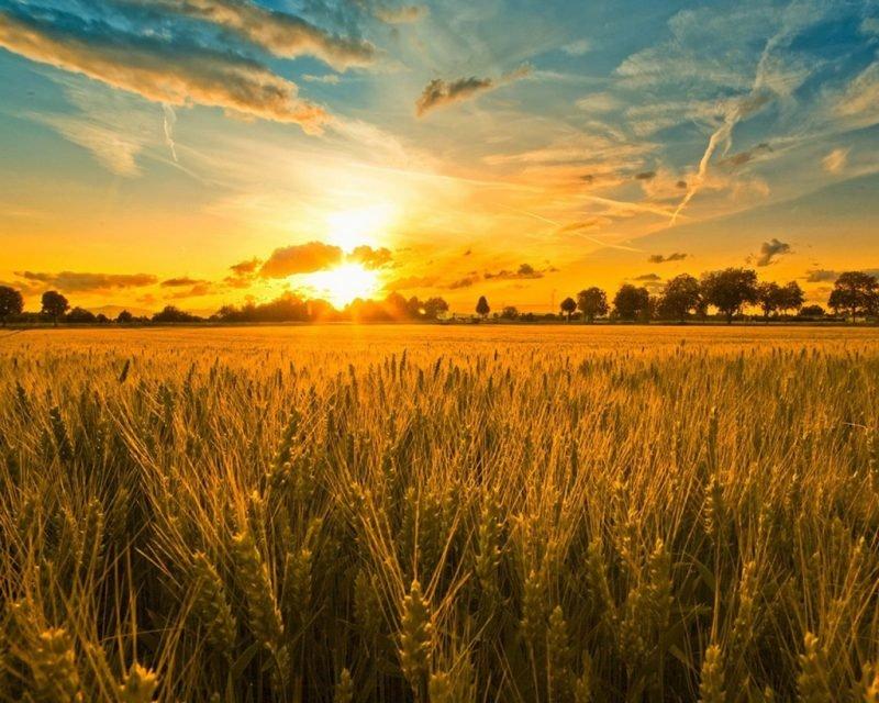 Интересные факты о солнце и его закате