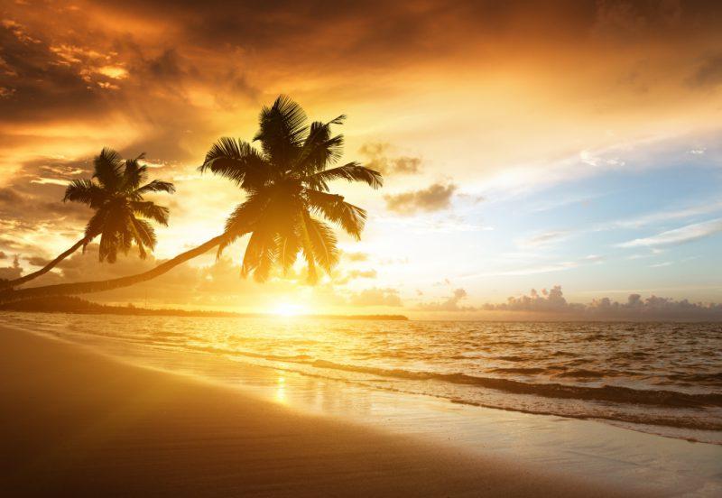 Какую пользу несет солнце