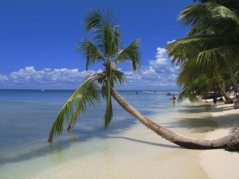 Особенности Доминиканы