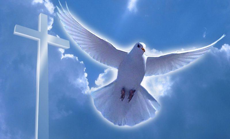 Прошеное воскресение